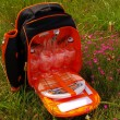 Piknikový batoh Traveller