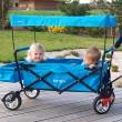 Skládací vozík CT-500-T s ochrannou stříškou