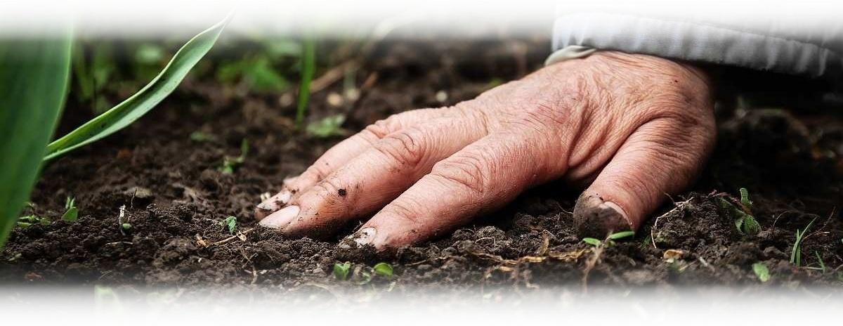 kompost_komposter_kompostovani_1